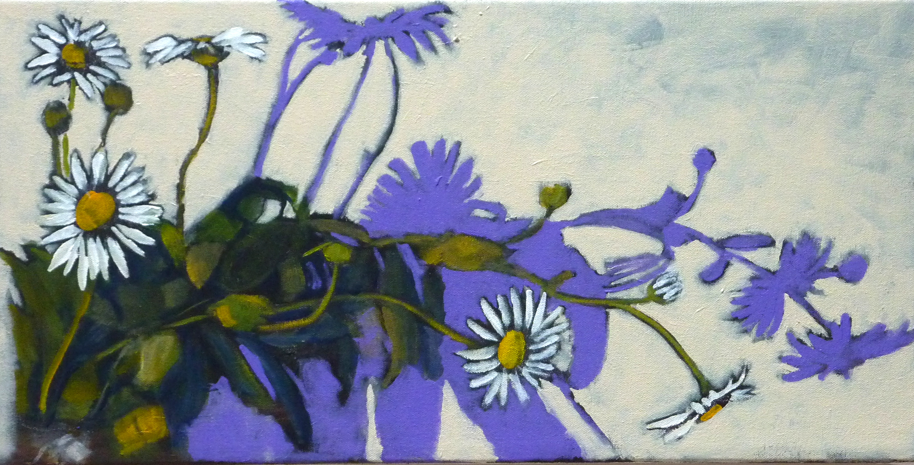 Bloomin' Montauk Daisies, horizontal 3 Oct 4, 2015, 11-008